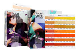 GP1606N SOLID CHIPS aperto